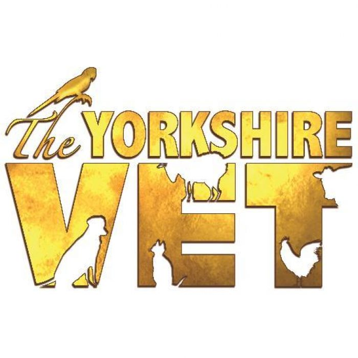 Ch5 The Yorkshire Vet
